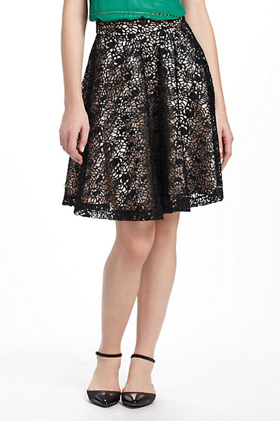Anthropologie_full skirt3