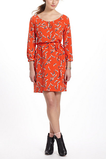 Anthropologie_pattern dress